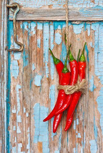 Chili. photo by ZakariaSnow