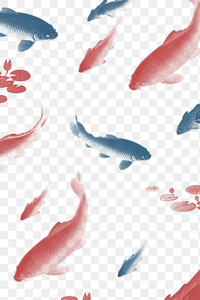 Blue And Red Koi Fish Patterned Background Illustration Free Image By Rawpixel Com Nap Background Patterns Animals Artwork Fish Patterns