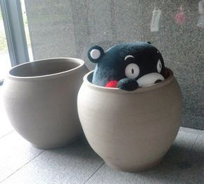 YOU ARE SO CUTE KUMAMON!!!!!!!!!!!!!!!!!!!!!!!!!!!!!!!