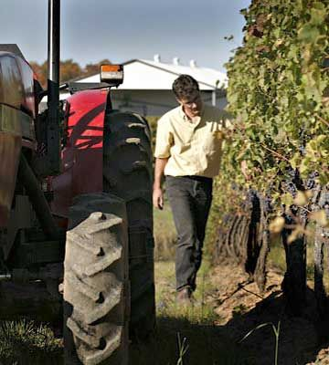 Featherstone Estate Winery, handmade wines