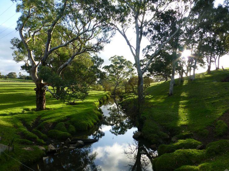 Mount Barker creek
