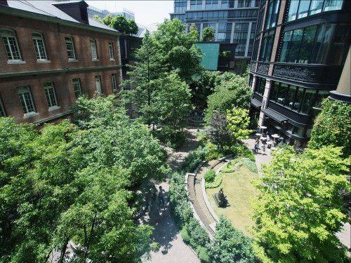 東京にある自然のオアシス。実はここは三菱一号館美術館の中にある広場なんです。 丸の内にあるとは思えませんよね。 四季折々の季節を感じる癒しのスポットで、秋晴れの日はとても気持ちよく過ごせますよ。 春はバラが、夏は新緑もたいへん美しいです。 また、建築デザインなどに興味のある方にもおすすめです。 明治時代の先進的な洋館を学ぶことができますよ! ぜひ、癒やしの時間と芸術をお楽しみください。
