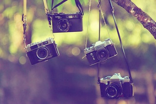 Essential Step to Get More Traffic from Pinterest: Picture, Photos, Inspiration, Life, Tree, Vintage Cameras, Vintage Photography, Things