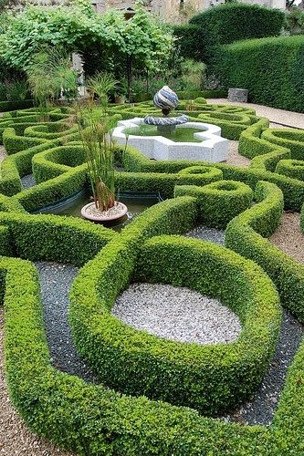boxwood knot garden unknown source by kingswood