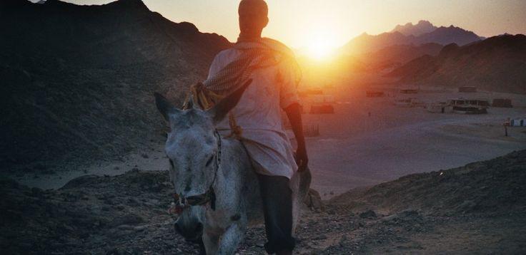 Egypt at sundown (c) Lomoherz.de