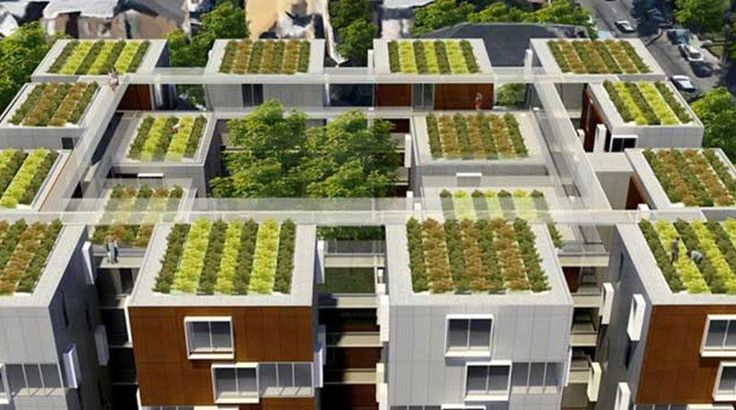 Αντιγραφάκιας: Οι πράσινες στέγες και τα οφέλη τους