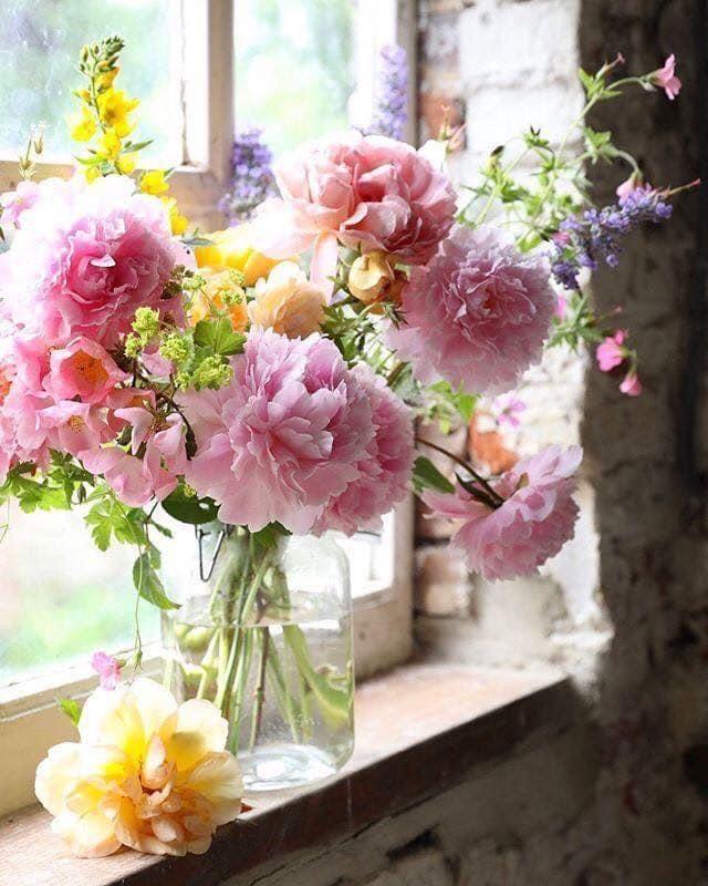 Pin By روز لافندر On ورد Beautiful Flower Arrangements Pretty Flowers Beautiful Flowers