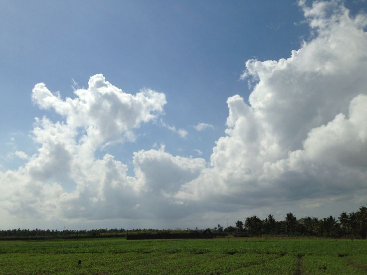 Sky from my village