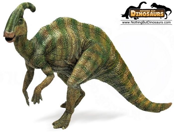 25 Best Ideas About Dinosaur Toys On Pinterest Dinosaur