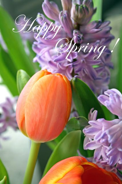 March 20, 2013 - Happy First Day of Spring! | Happy Spring! | @warrengrovegarden.blogspot.jp