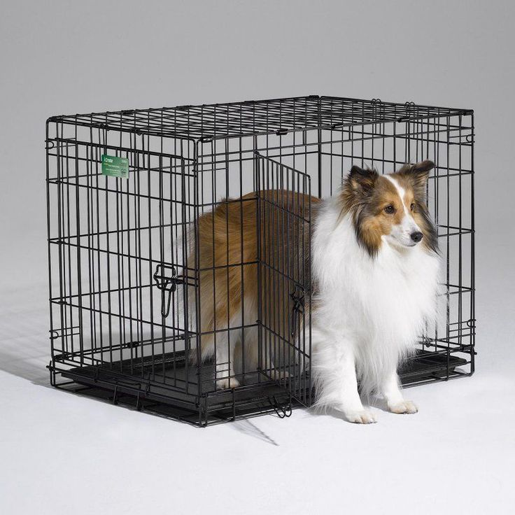 MidWest iCrate Folding Double Door Dog Crate - 1530DD