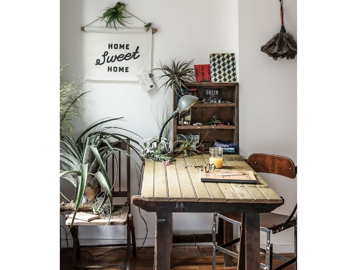 7 best Pflanzen images on Pinterest Backyard, Balcony and - blumenampel selber machen hangekorb