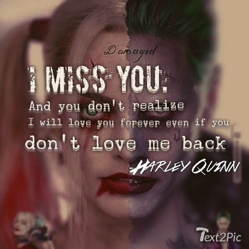 Found on Google from tumblr.com | Harley and puddin forever