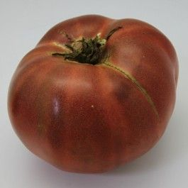 Cherokee Purple:  Heirloom, non-GMO  80 days. An old Cherokee Indian heirloom, pre-1890 variety; beautiful deep dusky purple-pink color, superb sweet flavor, and very large sized fruit. Try this one for real old-time tomato flavor. My favorite dark tomato