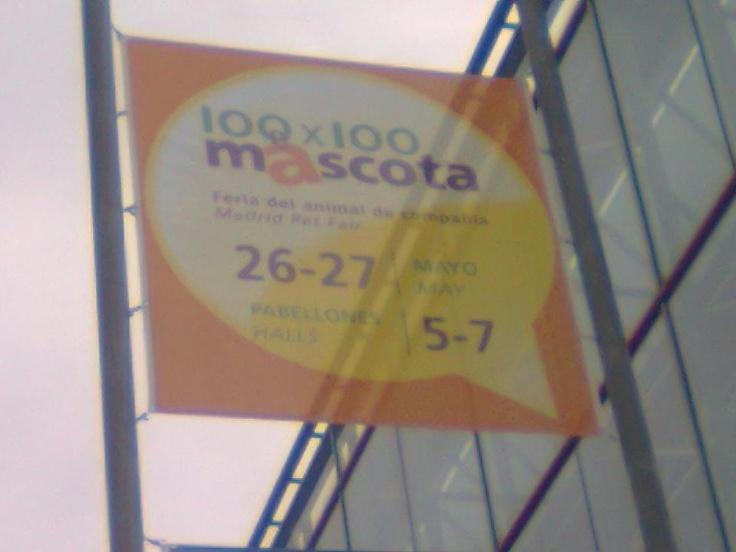 Feria 100x100 Mascota. (Madrid 2012)