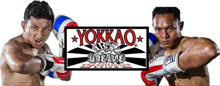 Yokkao Boxing - Muay Thai Gear - Yokkao MMA equipment muay thai