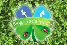 Logo BingoSocialMedia