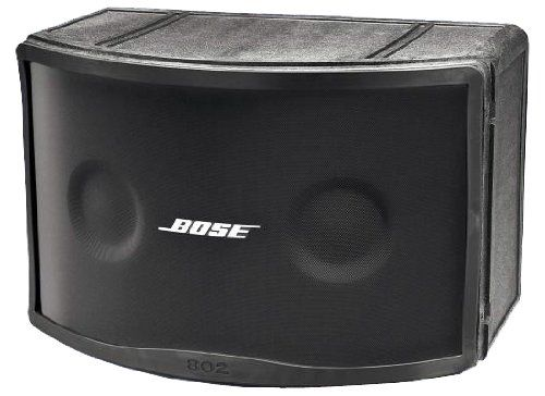 Bose 802c Speakers (powered by a Crown XS-1200 amplifier)