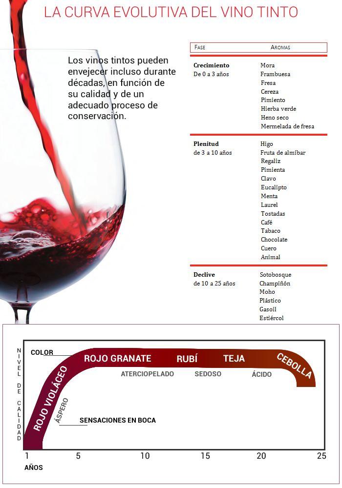 ¿Cuántos años vive un vino? https://www.vinetur.com/2014121517704/cuantos-anos-vive-un-vino.html