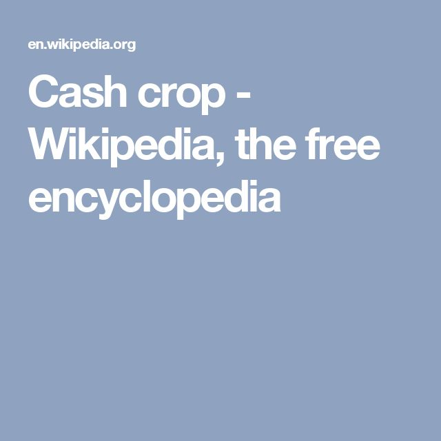 Cash crop - Wikipedia, the free encyclopedia