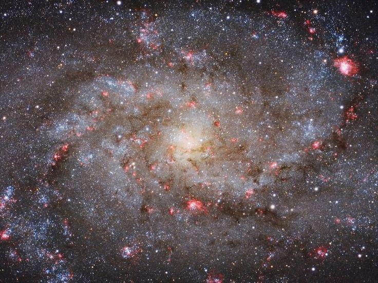 Dalle aurore alle galassie: la giuria ha giudicato questa foto della Galassia del Triangolo (M33) una delle migliori mai realizzate, per la definizione in cui si vedono le stelle blu e le piccole nebulose color rubino