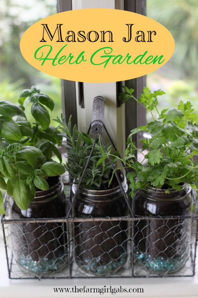 Create this easy Mason Jar Herb Garden for your window. It's the perfect container garden for herb lovers - especially if you are short on space in your yard.