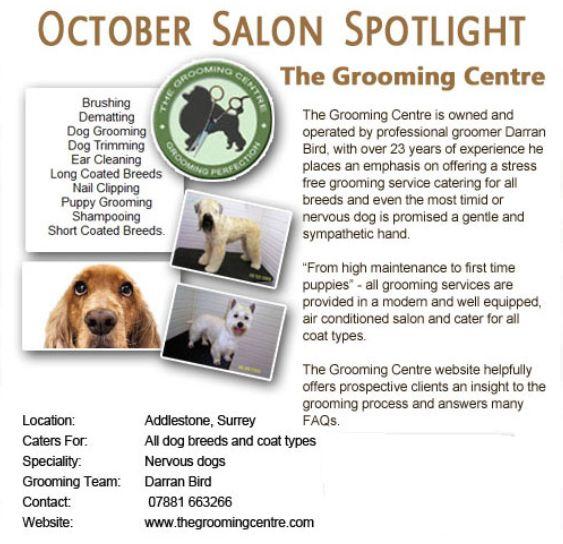 Salon Spotlight October 2011, The Grooming Centre