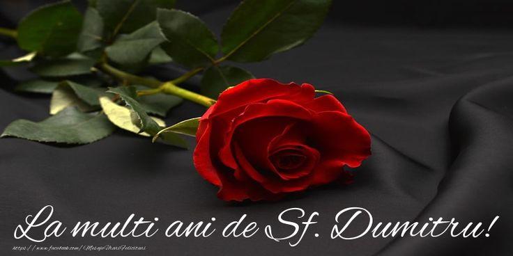 La multi ani de Sf. Dumitru!