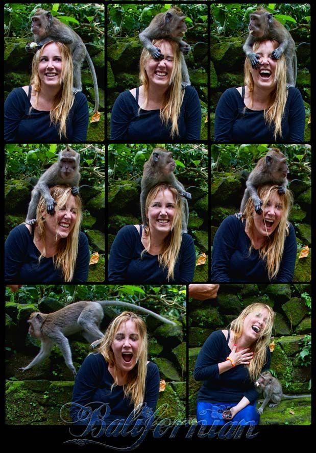 Bali's Monkey Forest Tours