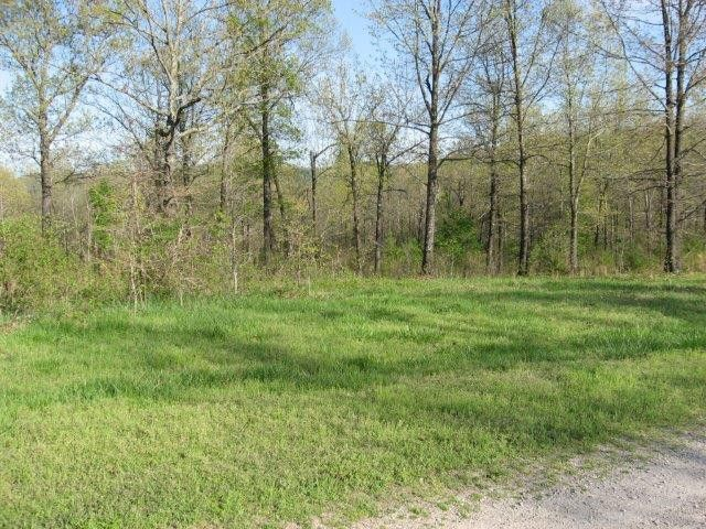 4.38 acres with Ozark View located in picturesque Rea Valley. 338 feet of frontage on a county road. Front portion cleared with scattered trees. Approved perc test for 3 bedroom home. Community water to lot. 15 minutes to boat launching on White River. Restrictions are: Minimum 1,000 square feet living area, no mobile/manufactured housing and horses allowed in Flippin AR