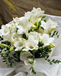 Freesia wedding bouquets - The Wedding Specialists