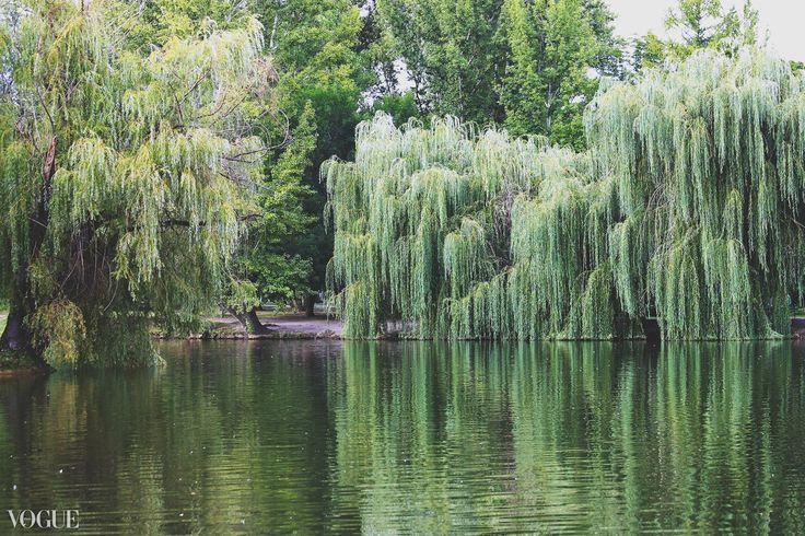 Городской парк Саратова Фото Денис Гаврилов      #Саратов #СаратовLife