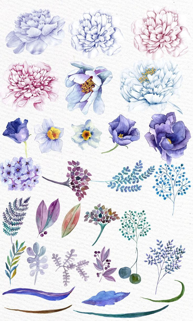 Pin Von Jerome Auf Posts Aquarell Blumen Blumen Aquarell Und