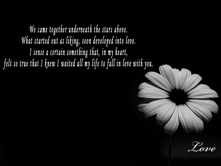 quotes and sayings about falling in love with your best friend Love Quotes Images Black and white for Facebook cover Photo For