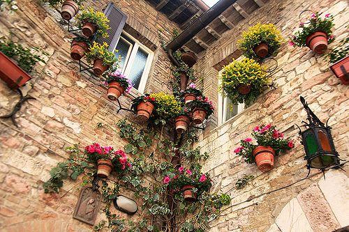 garden upSecret Gardens, Outdoor Style, Ii Outdoor, Donna Irene, Doors Gardens, Gardens Up Old, Flower Boxes, Gardens Growing, Bi Donna