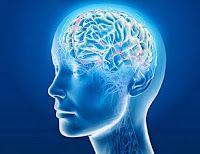 Alzheimer's Test, Alzheimer's Quiz