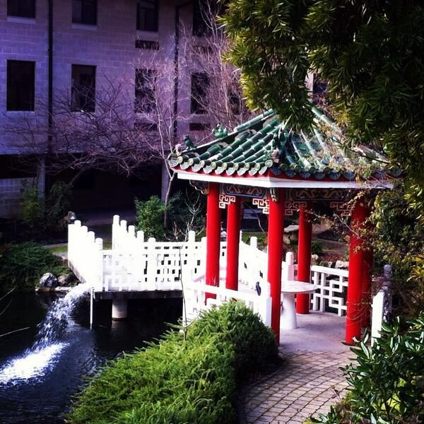 Check out this student submission of the Murdoch University Chinese Gardens