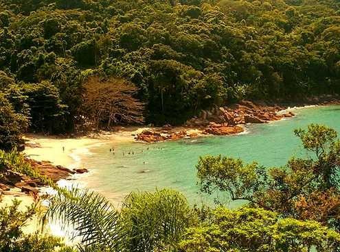 Praia do Cedro - Ubatuba - Brasil Mais