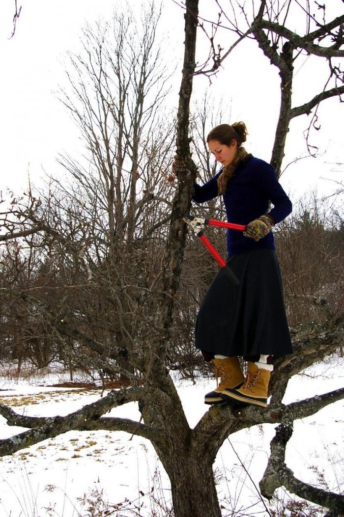 Pruning Trees In Winter Garden Design Ideas