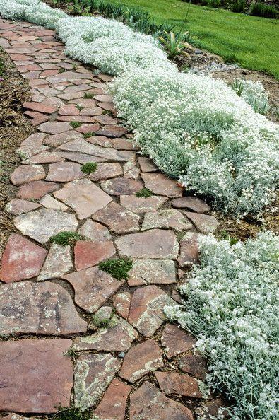 20 best images about landscaping on pinterest gardens for Landscaping rocks daytona beach