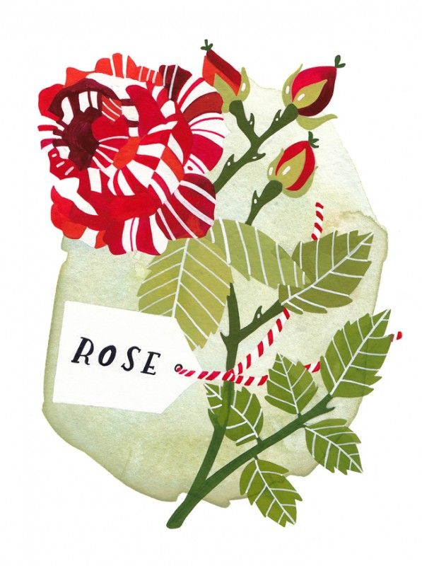 Rebekka Seale: Spring Flowers, Rebekka Seals, Red Poppies, Artists Bloom, Art Prints, Flowers Power, Candy Strips Rose, Candystrip Rose, Archives Art
