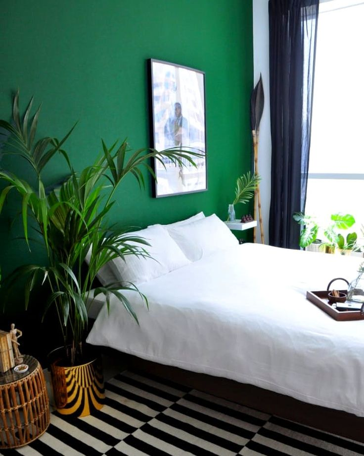 Best 25+ Green Accent Walls Ideas On Pinterest