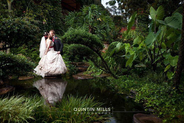 Shepstone Gardens Wedding