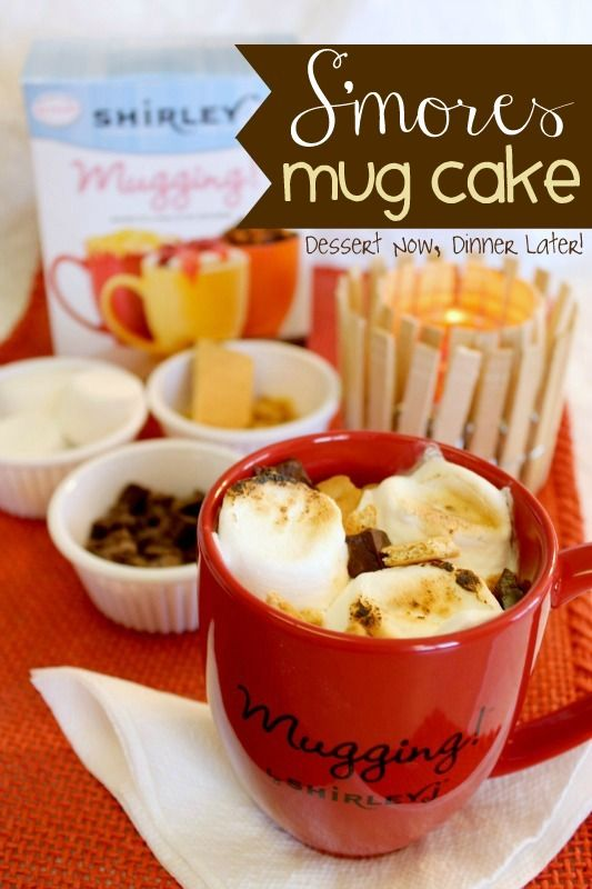 This S'mores Mug Cake on MyRecipeMagic.com looks fantastic! Definitely one of the best s'mores recipes that we've seen. It looks like it would be great as a summer dessert recipe because you won't have to heat up the house to enjoy a recipe for cake!