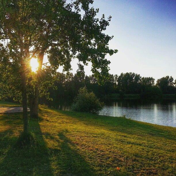 Coucher de soleil sur l'Etang de l'Estey à Dax. #landes #dax #etang #sunset #nature
