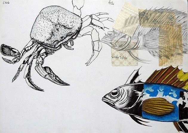International GCSE Art Sketchbook: Coursework Project 98%