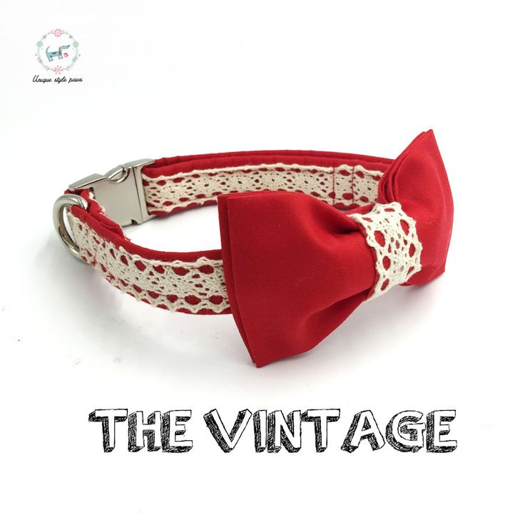 Dachshunder's Vintage Red Lace Bow Tie and Collar Set