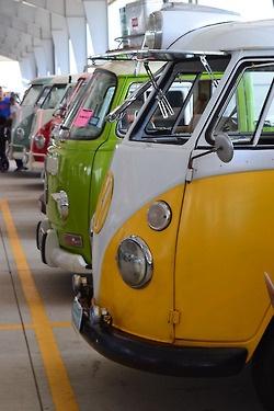 VW - row of vans