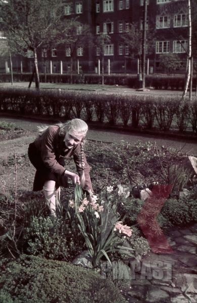 WW2 Color German Hitler Youth BDM girl in uniform flowers Bremerhaven apartment…