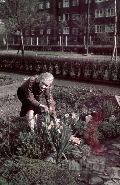 WW2 Color German Hitler Youth BDM girl in uniform flowers Bremerhaven apartment building garden
